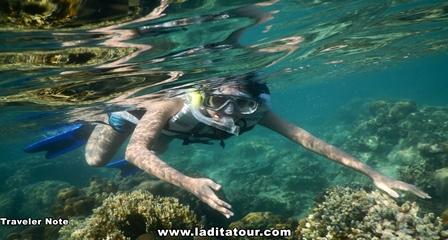 Snorkeling Pulau Harapan
