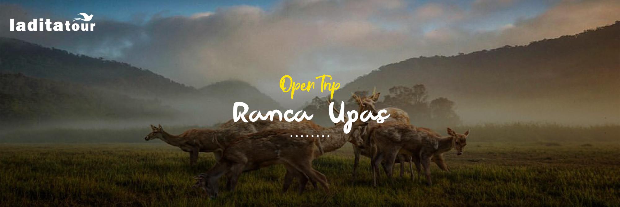 Open Trip Ranca Upas Bandung